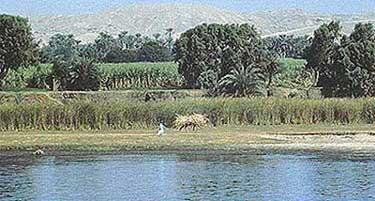egypt the gift of nile essays